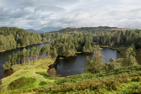 Panoramic view over Tarn Hows in English Lake District photo