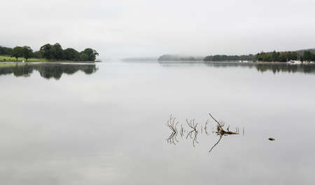 cumbria: Reflection of branch in still waters of Coniston Water in Lake District
