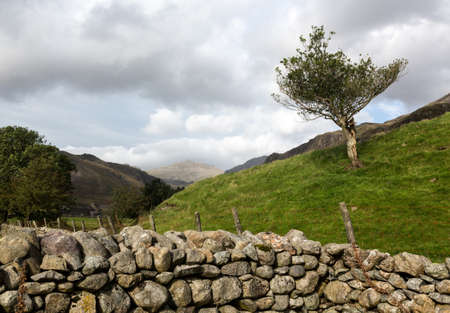 cumbria: Ancient stone farm dry stone wall in English Lake District