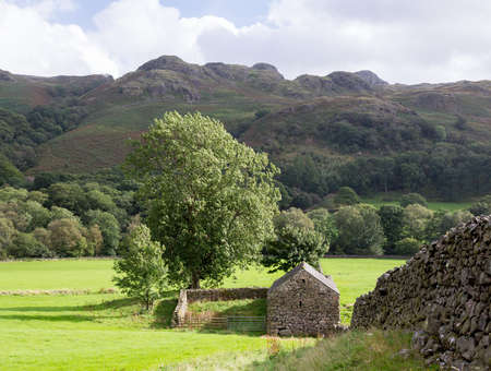 Ancient stone farm building and dry stone wall in English Lake District photo