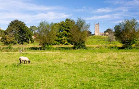cotswold: Chiesa di San Giacomo visto in tutta prato con le pecore nel centro storico di Cotswold di Chipping Campden