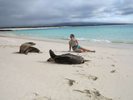 Female tourist lays on beach with sea lions and seals in Galapagos Island in Ecuador photo