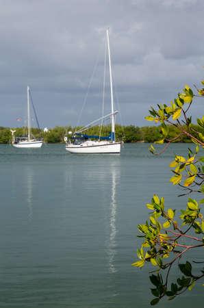 아무 명: 빌 버기 케이프 플로리다 주립 공원 키 비스 케인 마이애미에서 이름없는 항구에 정박 요트와 보트 스톡 사진