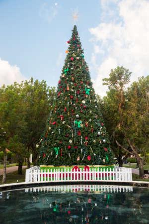 key biscane: Un gran �rbol de Navidad en altura exterior parque en Key Biscayne Florida decorada para Navidad
