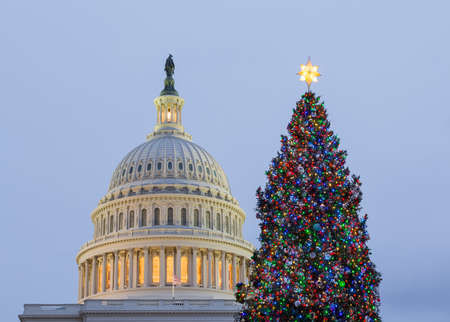 national congress: Christmas tree in early evening as sun setting over Washington DC Stock Photo