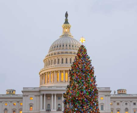 워싱턴 DC를 통해 일 설정과 이른 저녁에 크리스마스 트리