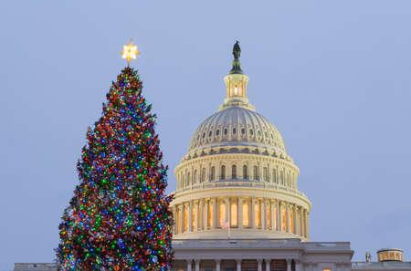 워싱턴 DC를 통해 태양 설정으로 이른 저녁에 크리스마스 트리