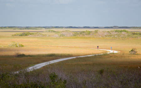 emptiness: Cycling tourists riding curving trail in emptiness of Everglades national park Florida Stock Photo