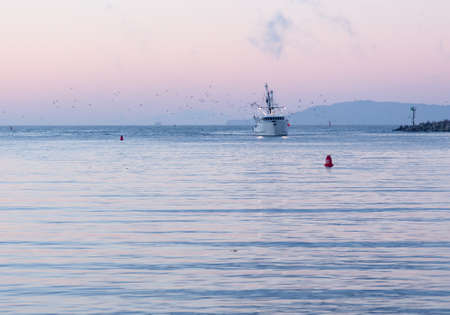 Fishing boat trawler entering harbor at Ventura at dawn with lights and birds following photo