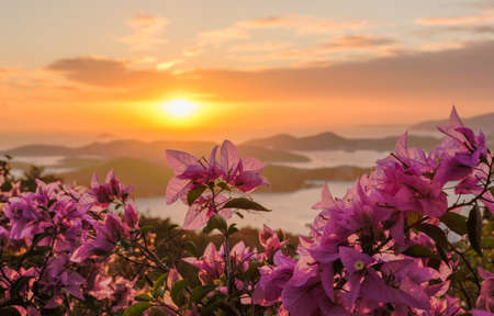 st: Red flowers frame the sunset over the islands in harbor of Charlotte Amalie St Thomas USVI Stock Photo
