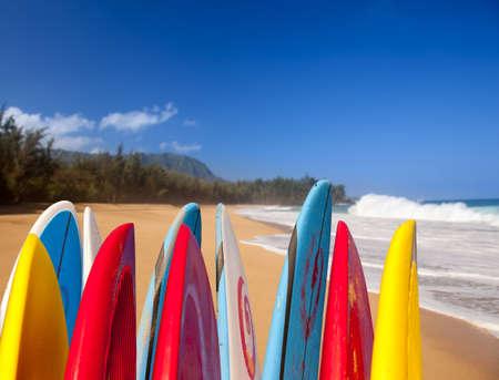 Tipy surfovací prkno nebo surfy na Lumahai pláži v Kauai na Havaji na písečné pobřeží u moře