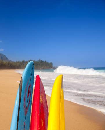 board: TIps of surf board or surfboards at Lumahai beach in Kauai Hawaii on sandy shore by ocean
