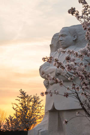 WASHINGTON DC - APRIL 8: The monument to Dr Martin Luther King in Washington DC surrounded by cherry blossoms on April 8, 2013. The memorial opened to the public on August 22, 2011.