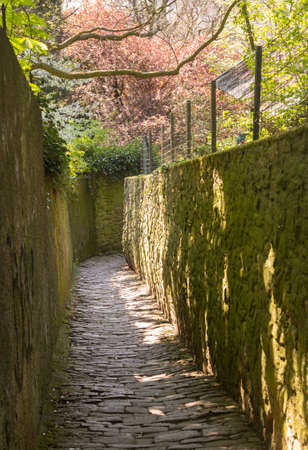 philosopher's: Steep Philosophers walk narrow cobbled path above old town city of Heidelberg Germany