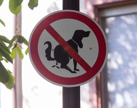 feces: Warning road sign against allowing dog to poop in the street