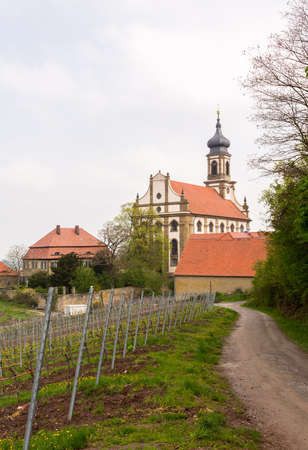 johannes: Evangelical Lutheran church of St Johannis or Johannes in small Bavarian village of Castell in Germany. Church rises above trees from surrounding vineyards of Castell winery.