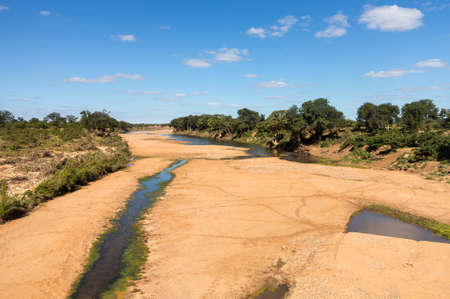 Broad dry river with small trickle of water and animal tracks crossing to pools in Kruger National park in South Africa Standard-Bild