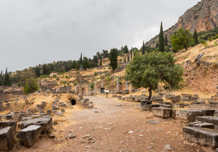 Delphi is both an archaeological site and a modern town in Greece on the south-western spur of Mount Parnassus in the valley of Phocis. The site of Delphi was believed to be determined by Zeus photo