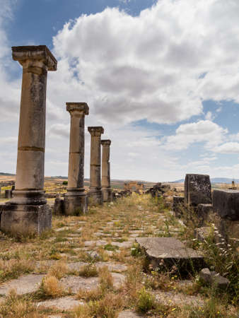 agricultural area: Volubilis is a partly excavated Roman city in Morocco situated near Meknes between Fes and Rabat. Built in a fertile agricultural area, it was developed from the 3rd century BC onwards as a Phoenician Carthaginian settlement Stock Photo