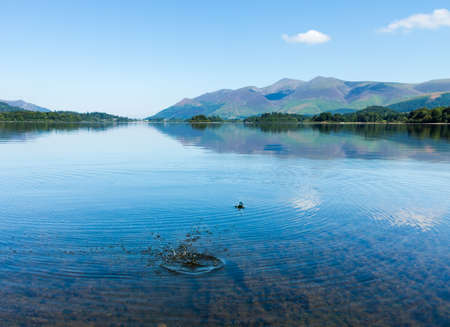 cumbria: Very smooth and calm water on Derwent Water in English Lake District is spoiled by splash and ripples from a stone thrown into the flat surface of the lakes.