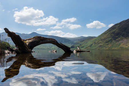 Mirror like reflection of the Lake District hills surrounding Crummock Water framed by the a dead tree trunk lying in the water framing the distant mountains. Idyllic image from the English Lakes Stock Photo - 23730763