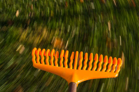 Motion blur created when orange lawn rake is moved through the leaves on green lawn with a focus on the tool as the grass and falled autumn leaves blur with movement to suggest work photo