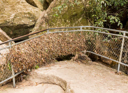Flood from mountain river leave leaves and twigs in steel fence at lookout point