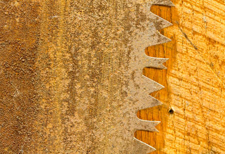 Macro image of the sharp teeth of large circular saw blade photo