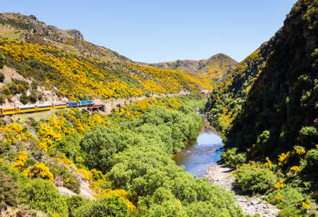 narrow gauge railways: Train and coaches of Taieri Gorge tourist railway runs alongside river in a ravine on its journey up the valley