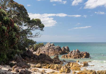 new zealand beach: View of the rocky coastline from beach of Tauranga in New Zealand