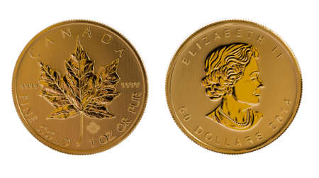 canadian coin: Pair of gold maple leaf one troy ounce golden coins from Canadian Treasury in uncirculated condition