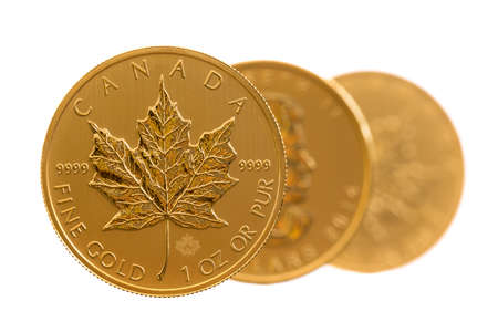 uncirculated: Trio of gold maple leaf one troy ounce golden coins from Canadian Treasury in uncirculated condition Editorial