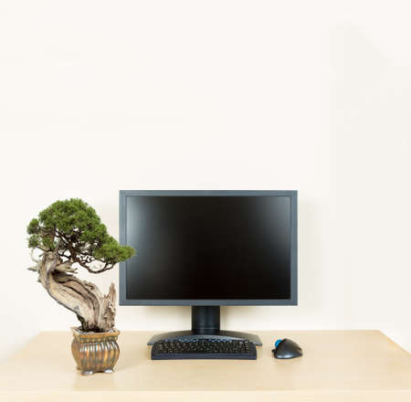 cubicle: Small old bonsai tree in golden pot on plain wooden desk with computer monitor and keyboard to suggest calm and meditation at work