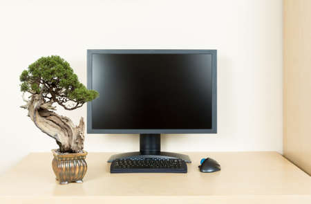 Small old bonsai tree in golden pot on plain wooden desk with computer monitor and keyboard to suggest calm and meditation at work