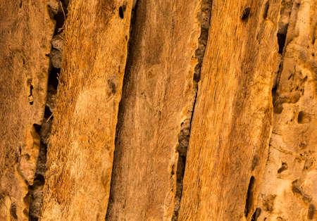 Detail of wooden beams at Shaikh Isa bin Ali House in Al Muharraq, Bahrain, Middle East