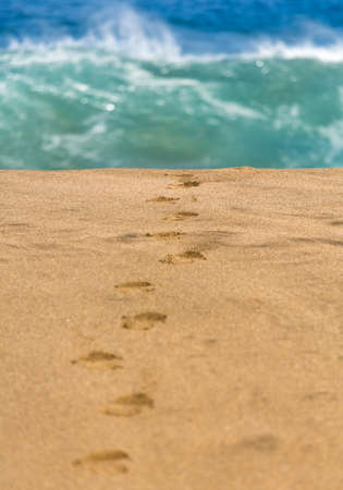 leading the way: Smooth and sandy beach with footsteps leading one way towards the crashing waves in the distance