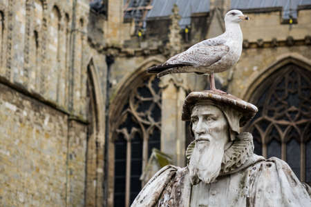 scholars: Sea gull or bird perched on top of the cap of the statue of Elizabethan scholar in front of ornate stained glass windows of church