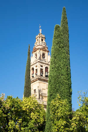 assumption: Bell tower of Mosque and Cathedral of our Lady of the Assumption in Cordoba, Andalucia, Spain Stock Photo
