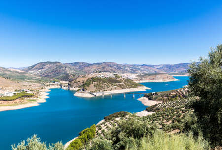 paisaje mediterraneo: Olive trees in rows reaching to the far distance on hills and mountain sides above Lake Iznajar in Andalucia in Southern Spain Foto de archivo