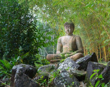 Statue de Bouddha sur un sol rocailleux en bambouseraie à Kauai Banque d'images
