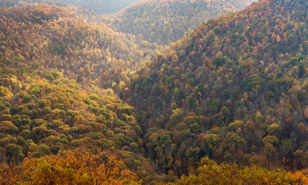 View of hills covered with fall trees from Raven Rock overlook at Coopers Rock State Forest West Virginia