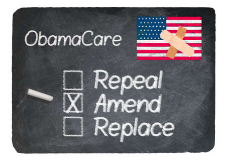 amend: Obamacare health plan choice for amend written in chalk on a chalky natural slate blackboard isolated against white background