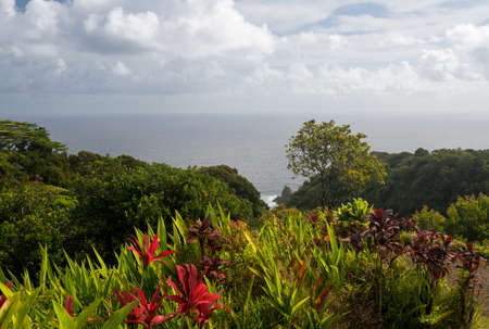 Keopuka rock overlook from garden with pacific ocean in the background