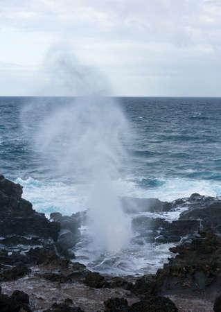 orificio nasal: Famous Nakalele blowhole on north coast of Maui erupts as strong waves crash against the lava shoreline in Hawaii