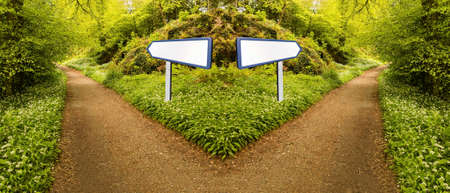 Conceptual photo of fork in forest path to illustrate making a choice or hard decision. Choose which direction to take at intersection