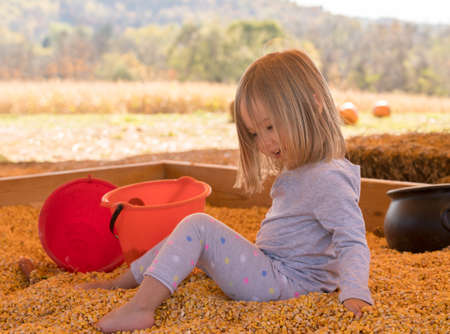 Young caucasian girl playing in the seeds from corn kernels with buckets and spade at halloween pumpkin patch