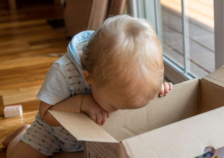 Young caucasian toddler looking and reaching inside a cardboard box with a serious expression