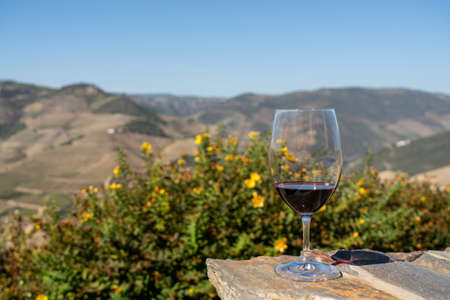 Glass of red wine or port for tasting above the hillsides of the Douro valley in Portugal 写真素材