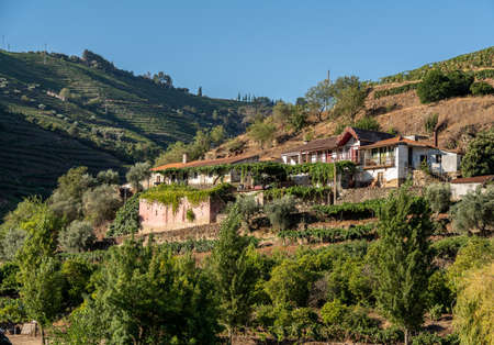 Whitewashed old Quinta or vineyard building on the banks of the River Douro in Portugal near Pinhao