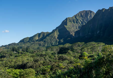 Steep tree covered mountain ridge rises above the Hoomaluhia Botantical Gardens on Oahu 版權商用圖片